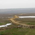 В Болградском районе у бизнесмена забирают 330 гектар