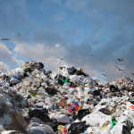 В Одессе поделили рынок услуг по вывозу мусора