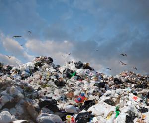 Компания Суркиса продолжит вывозить мусор в Приморском районе Одессы