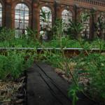Одесские власти взялись за железнодорожный въезд в город