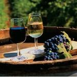 Вино как повод для праздника