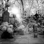 Одесские кладбища очищают от арендаторов Пеструева