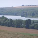 В селе Кричуново Любашевского района жестоко избили директора коммунального...