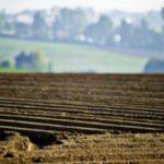 Cтарт весенних полевых работ