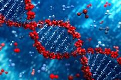 Международный День ДНК .Открытие Розалин Франклин.