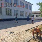 В Беляевском районе идет подготовка к новому учебному году (фото)