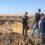 На Біляївщині незаконно добувають пісок — збиток понад 75 млн гривень
